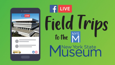 NYS Museum Virtual Field Trips